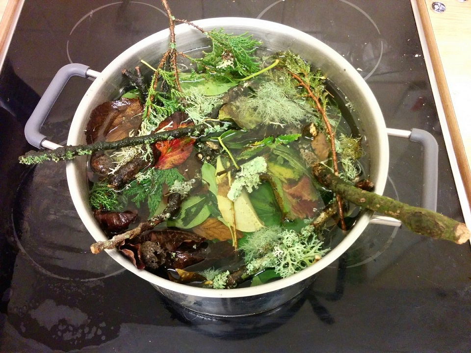 Soaking leaves, Eco printing