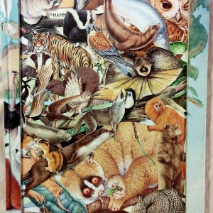 Altered Children's Animal Atlas