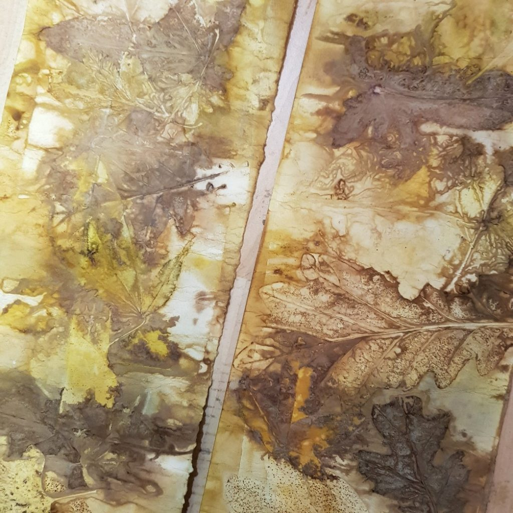 Eco prints with leaves